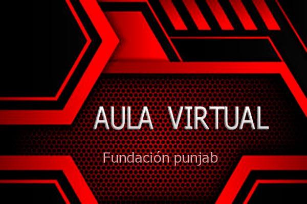 aula-virtual-fundacion